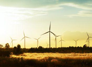 Opis procesu produkcyjnego łopat do turbin wiatrowych o poziomej osi obrotu – HAWT