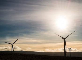 Oddziaływanie na środowisko elektrowni wiatrowych